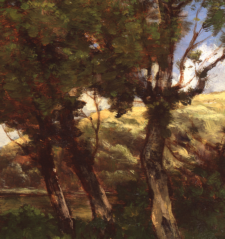 b1165_trees.jpg
