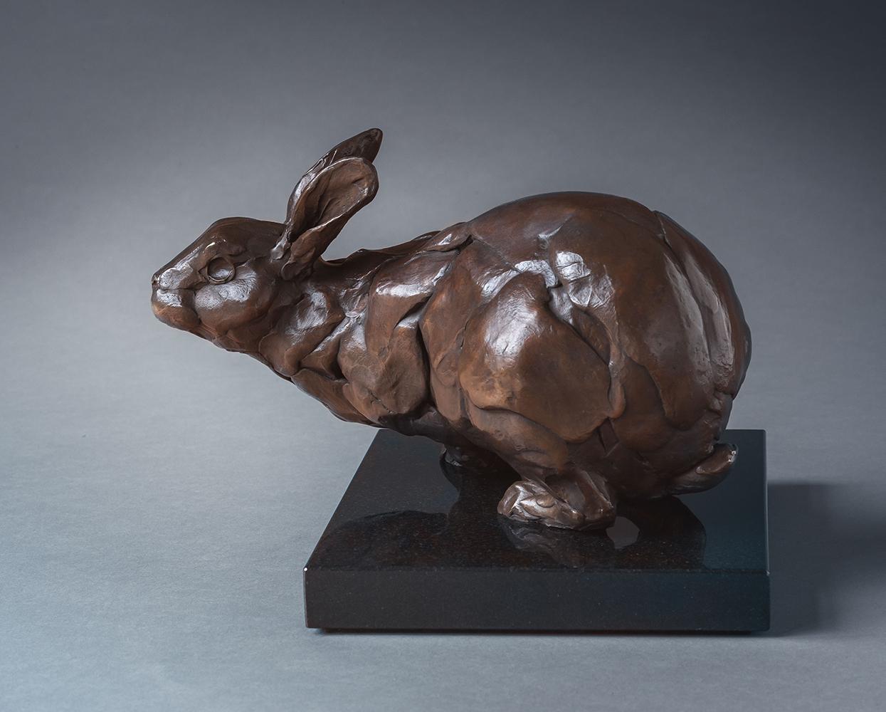 bart_walter_bw1024_dwarf_dutch_bunny.jpg
