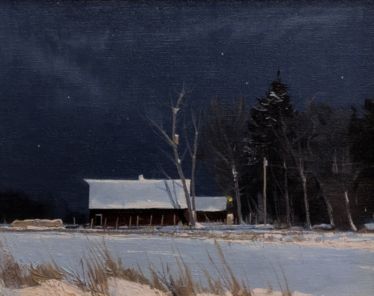 ben_bauer_bb1081_barn_and_woodduck_house_in_moonlight.jpg