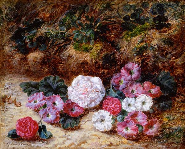 george_clare_a3427_camellias_and_primulas.jpg