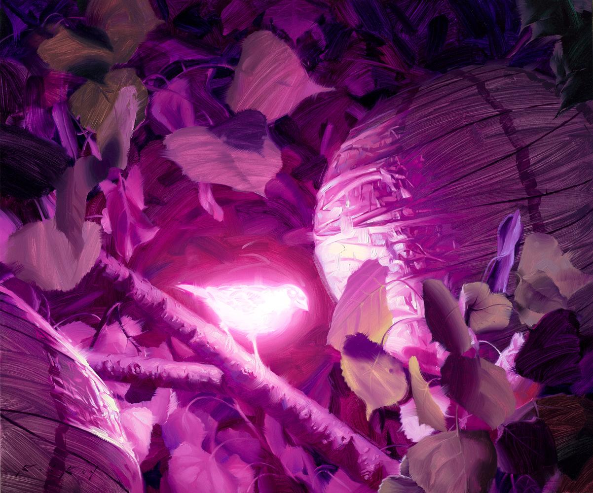 rob_rey_rr1000_bioluminescence_viii.jpg