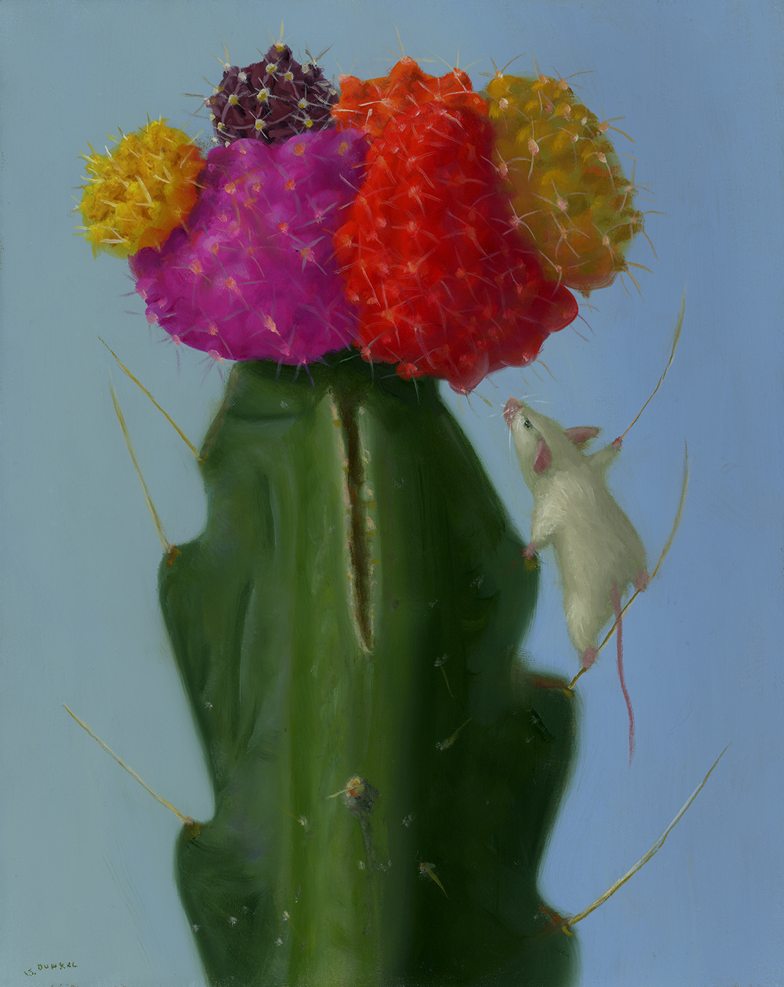 stuart_dunkel_sd1211_cactus_climber.jpg