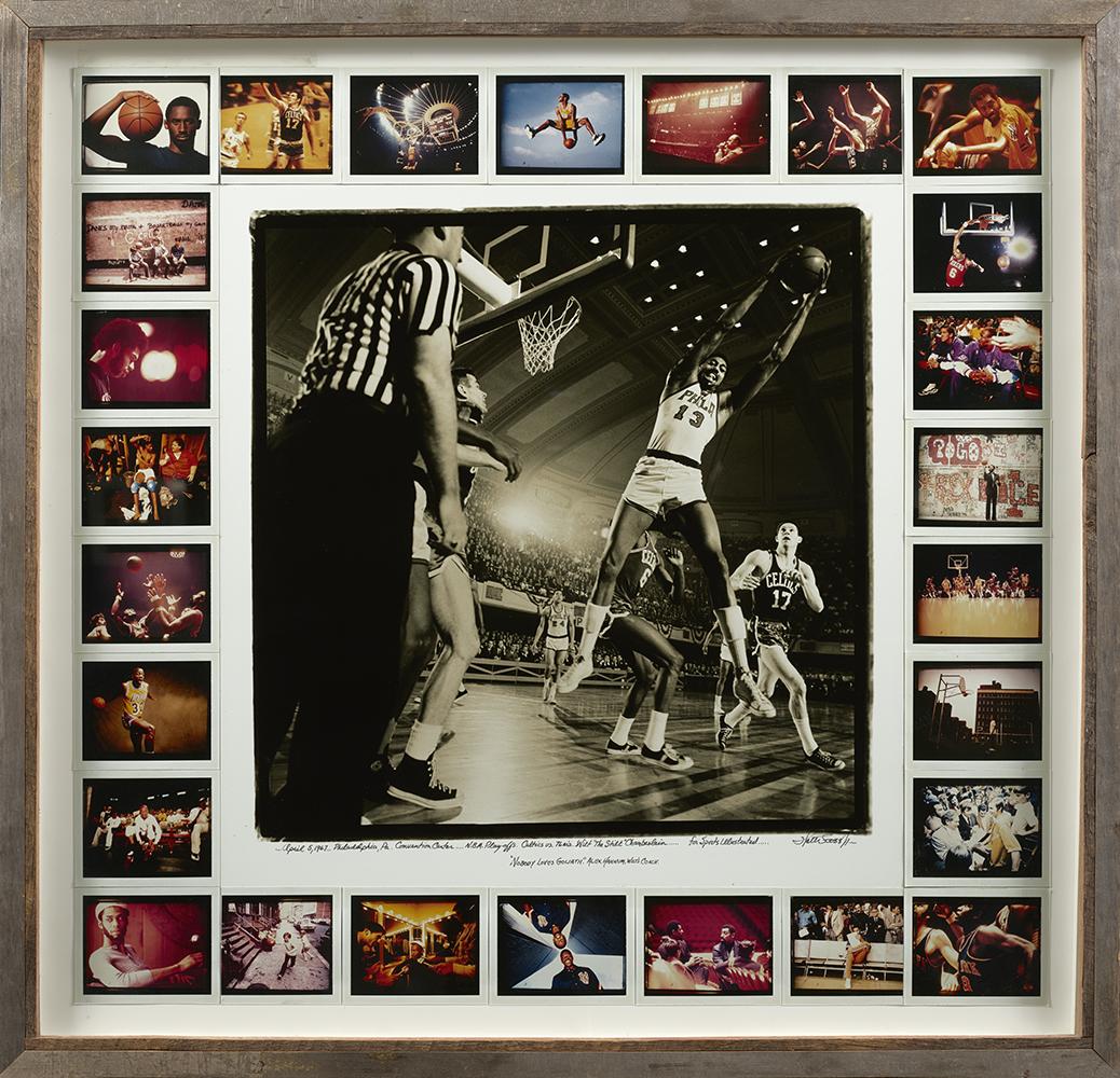 watler_iooss_z1006_the_wilt_collage_framed.jpg